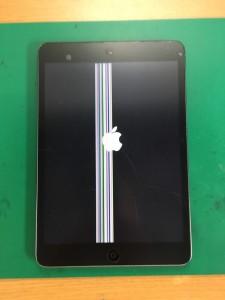 iPadmini2-1